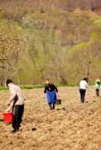 9502380-family-of-farmers-sowing-seeds-mixed-with-fertilizer-on-their-land